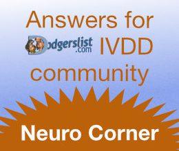 Neuro-corner-logo-e1591749929165.jpg