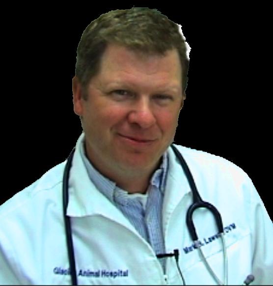 Dr-Lawson-dvm-1.png