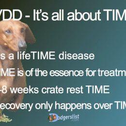 IVDD is a disease of TIME – Shortcut Thru IVDD