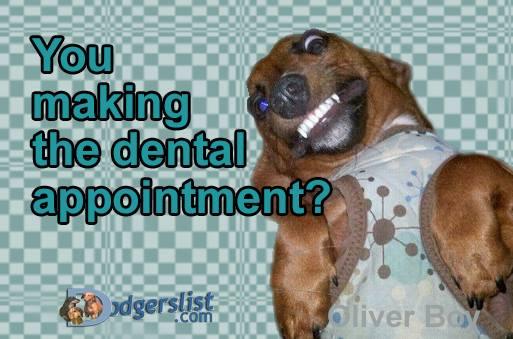 dentals.jpg